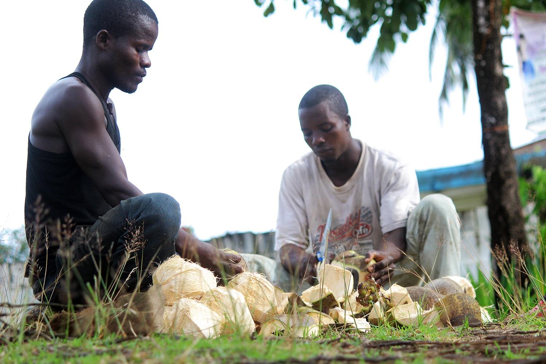 Making-coconut-oil-Liberia2