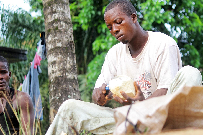 Making-coconut-oil-Liberia4