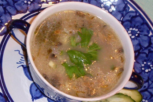Intense Mushroom Coconut Soup Recipe photo