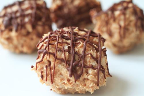 Gluten Free Chocolate Coconut Protein Bites Recipe Photo
